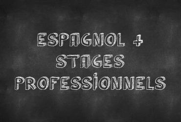 Espagnol + stages professionnels